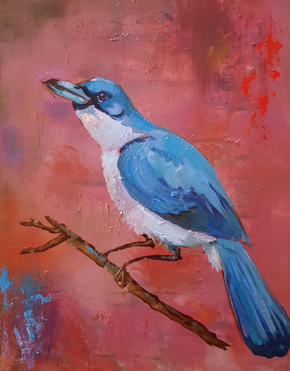 Bhavna Misra Bluebird