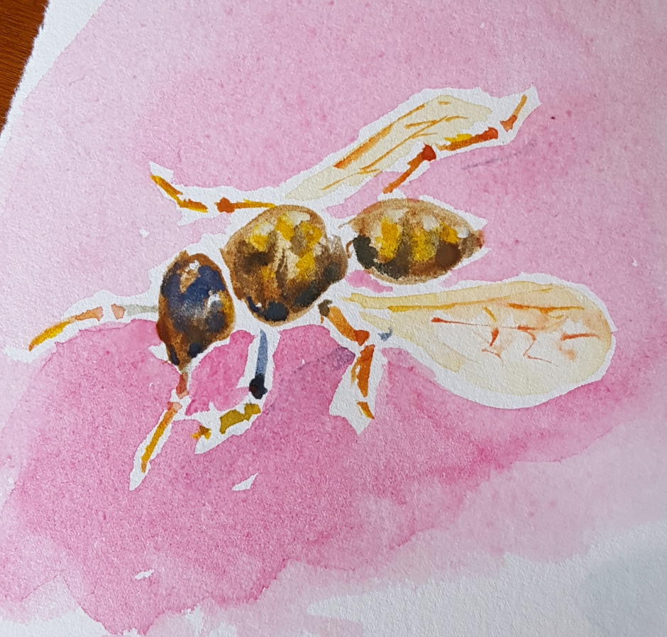 Bhavna Misra Wasp Watercolor 2017