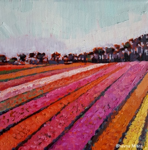 Tulip Rows - Signed
